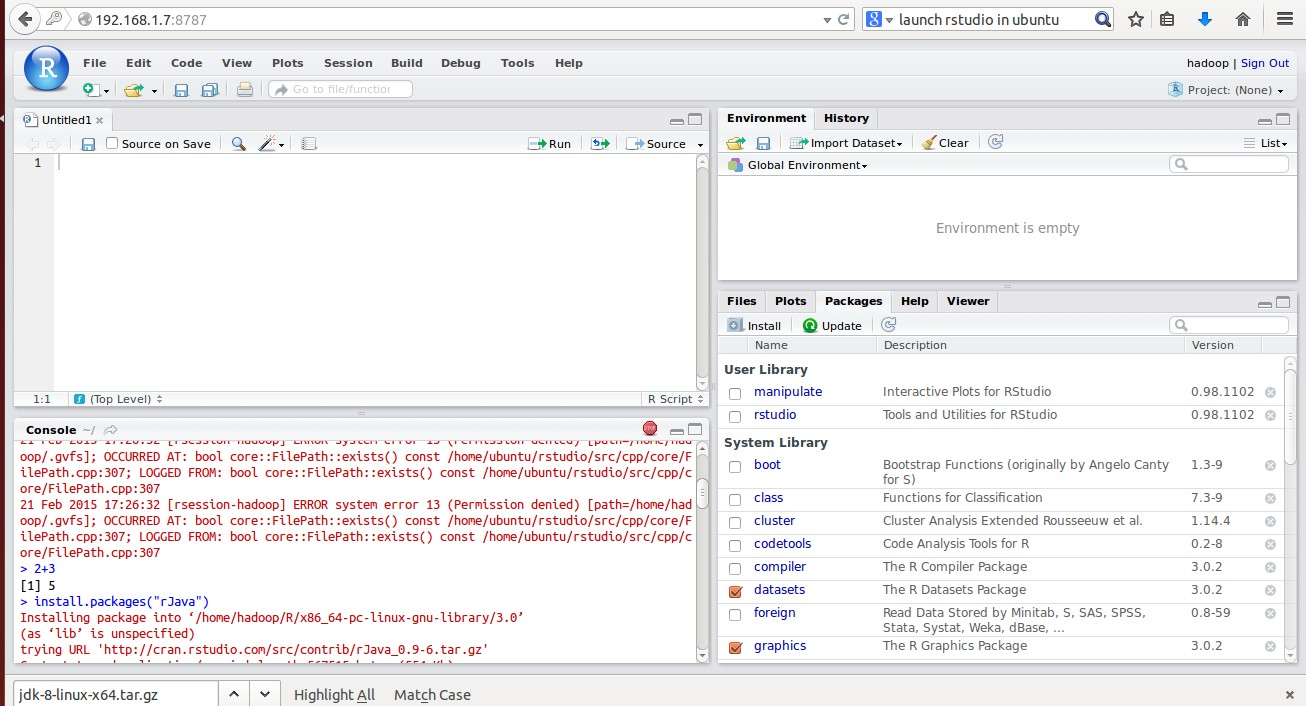 RStudio Web UI 2